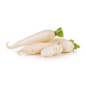 daikon or mooli radish