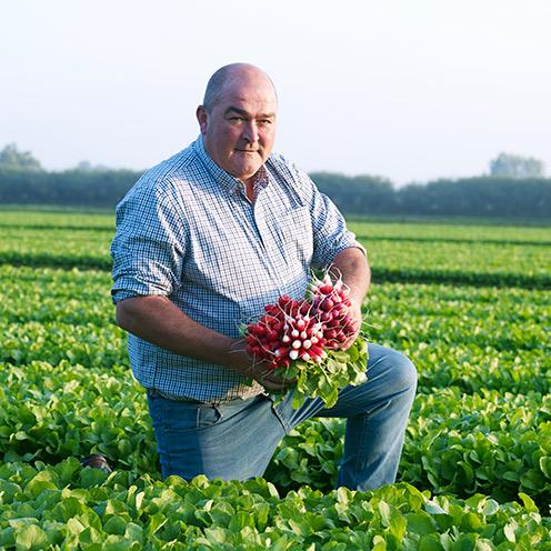 Meet the grower: Scott Watson