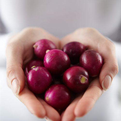 Heart radish